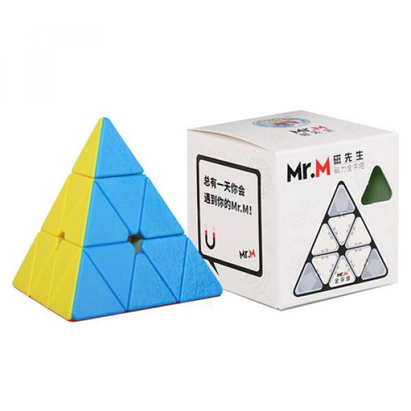 Cubos Rubik ShengShou Mr M Pyraminx